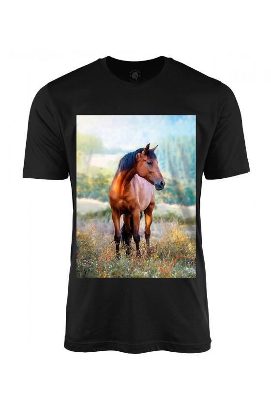 Koszulka męska Koń na łące