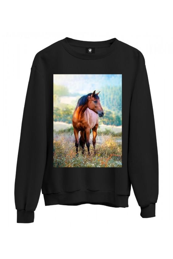 Bluza klasyczna Koń na łące