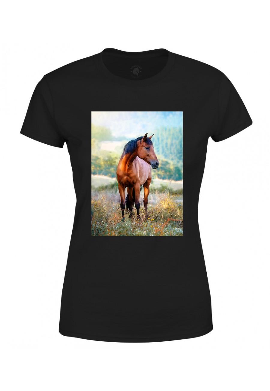Koszulka damska Koń na łące